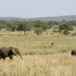 Klima und beste Reisezeit Tansania