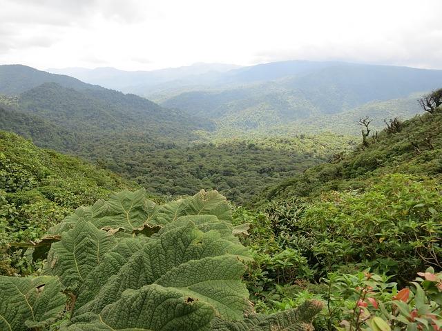 Costa Rica im November